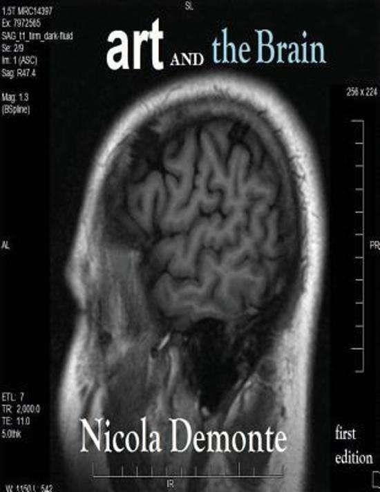 Art and the Brain