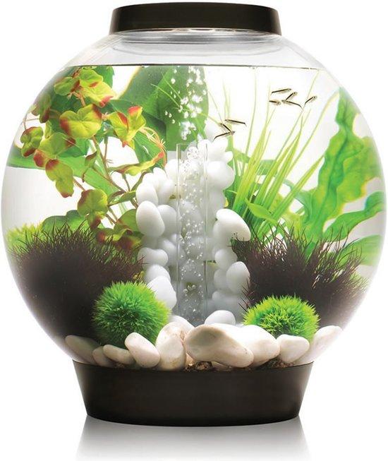 biorb baby standard led aquarium 30x30x32 cm. Black Bedroom Furniture Sets. Home Design Ideas