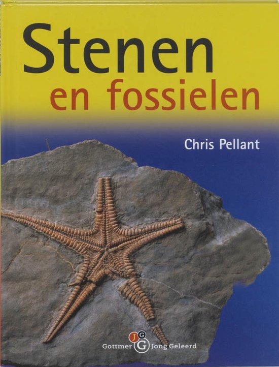 Stenen En Fossielen