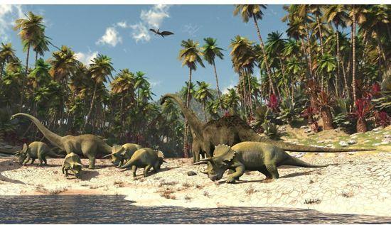 posterbehang dinosaurus xxl 368 x 254 cm