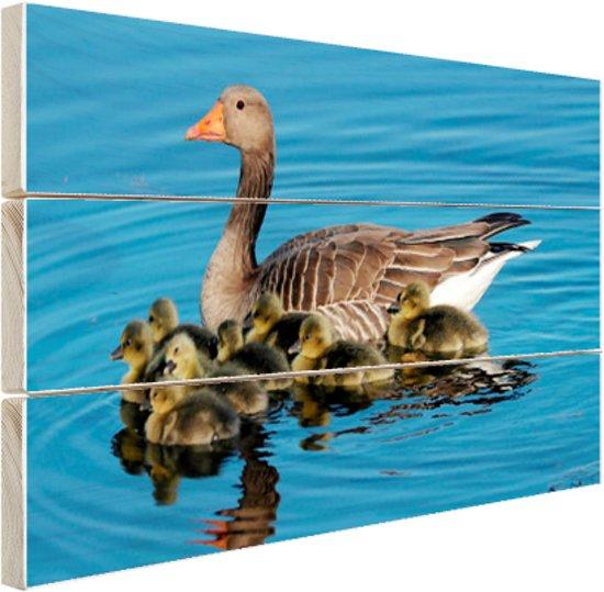 Gans met babyganzen in het water Hout 120x80 cm - Foto print op Hout (Wanddecoratie)