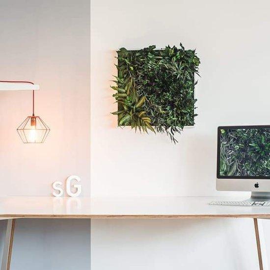 Verticale tuin - Jungle - 55 x 55cm