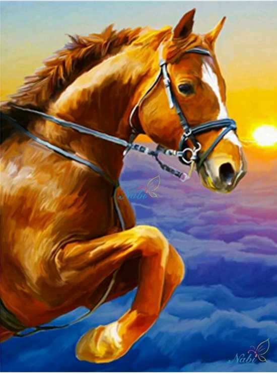 Ongekend bol.com | Full 5D Diamond Painting 50*35 - Paard - Volledig EI-32