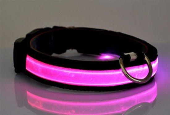 Hondenhalsband Met Licht : Bol led verlichte hondenhalsband roze maat s veilig