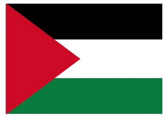 Vlag Palestina stickers