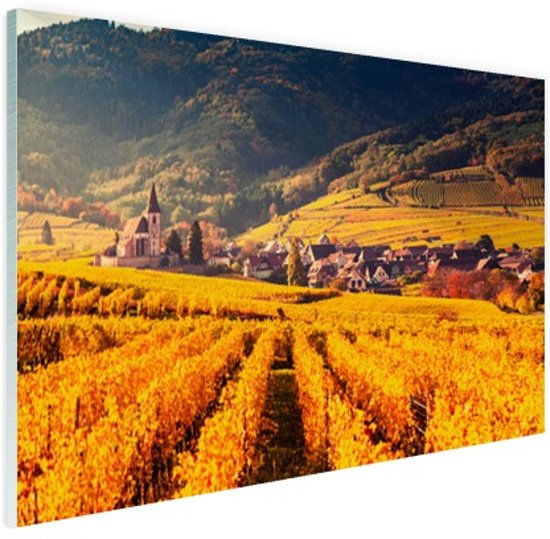 Geel oranje gekleurde wijngaard Glas 120x80 cm - Foto print op Glas (Plexiglas wanddecoratie)