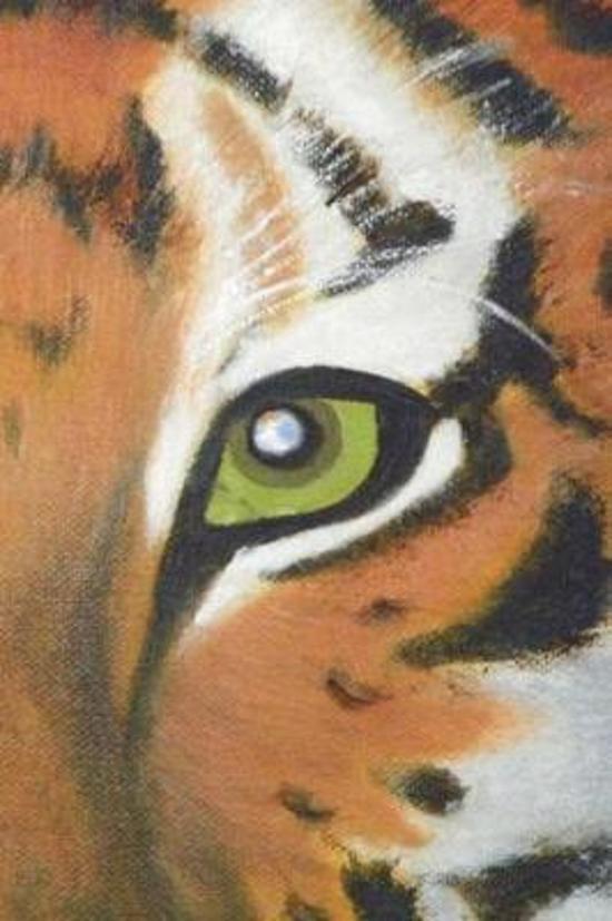 Tiger Eyes Journal