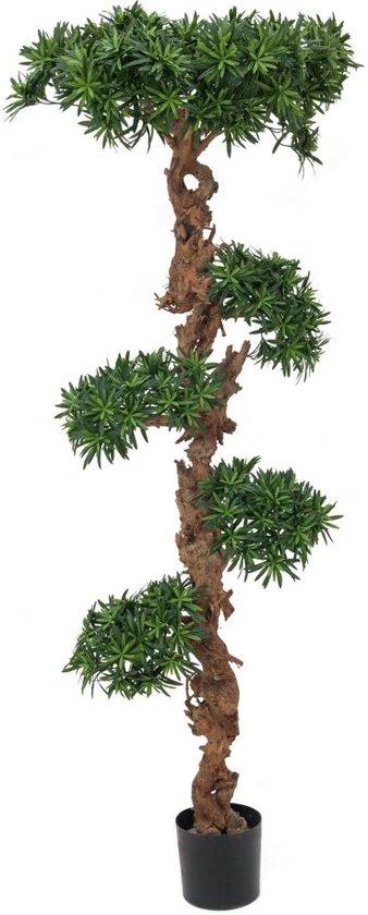 Bonsai Voor Binnen.Europalms Bonsai Kunstplanten Voor Binnen In Pot 180 Cm