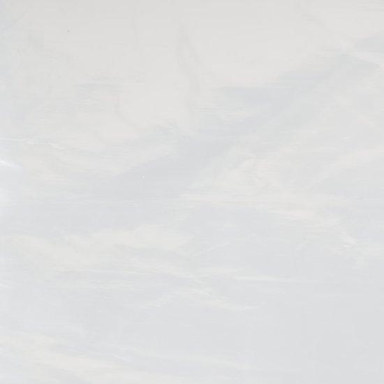 Travellife Afdekfolie Transparant - 250x500cm