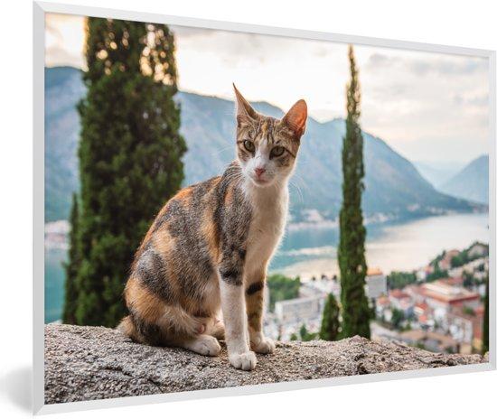 Foto in lijst - Kat op het muurtje met overzicht over de Baai van Kotor in Montenegro fotolijst wit 60x40 cm - Poster in lijst (Wanddecoratie woonkamer / slaapkamer)