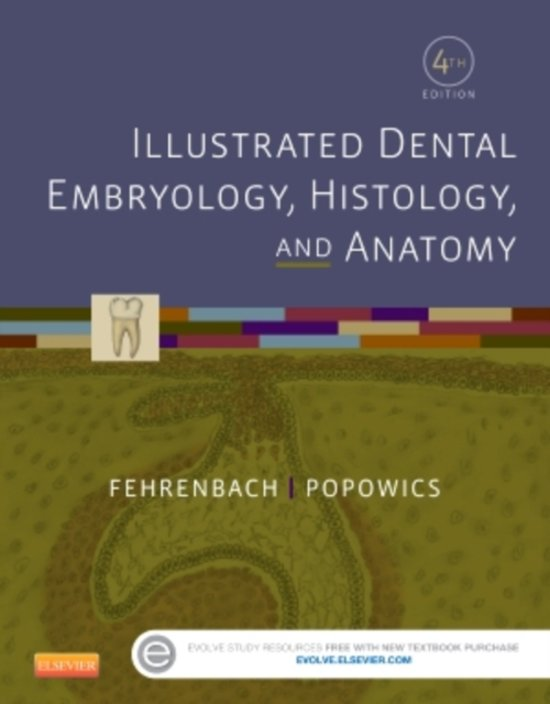 bol.com | Illustrated Dental Embryology, Histology, and Anatomy ...