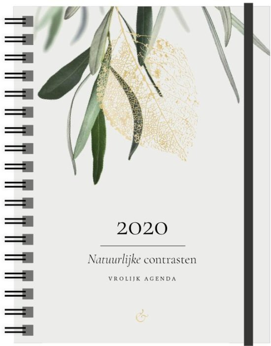 Afbeelding van Vrolijk Agenda 2020 groot