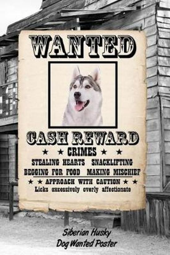 Siberian Husky Dog Wanted Poster