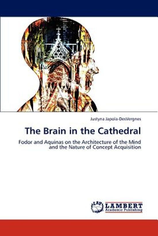 The Brain in the Cathedral