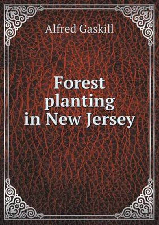 Forest Planting in New Jersey