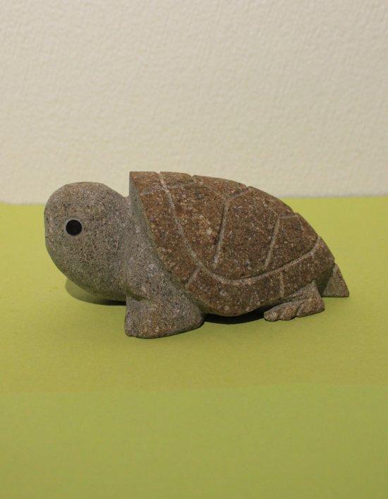 Bruinsteen schildpad