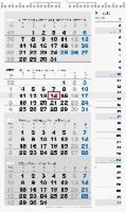 rido Viermonatskalender 2019 Kombi-Planer 4