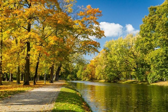 Papermoon River in Autumn Park Vlies Fotobehang 200x149cm 4-Banen
