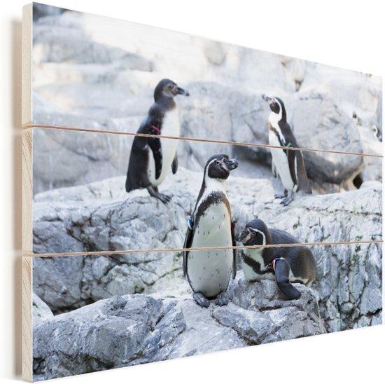 Groepje humboldtpinguïns op kalkrotsen Vurenhout met planken 30x20 cm - klein - Foto print op Hout (Wanddecoratie)