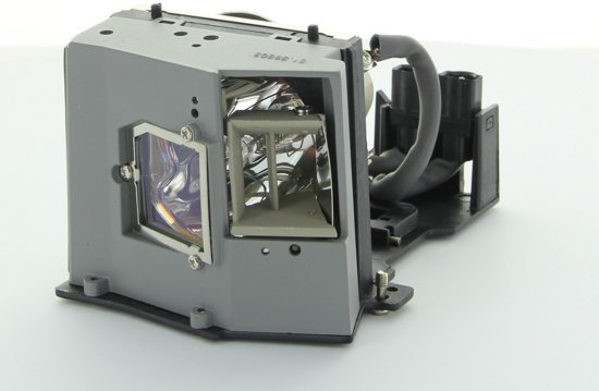 Acer EC.J2901.001 Projector Lamp (bevat originele UHP lamp)