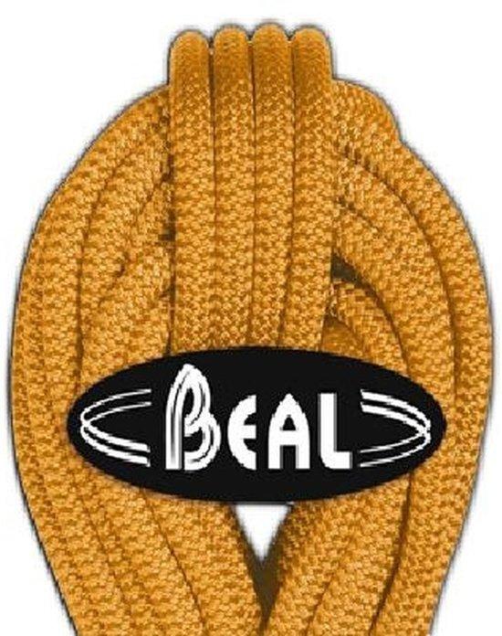 Beal Wall Master 10,5mm Unicore Ideaal voor indoor klimhallen 30m - Violet