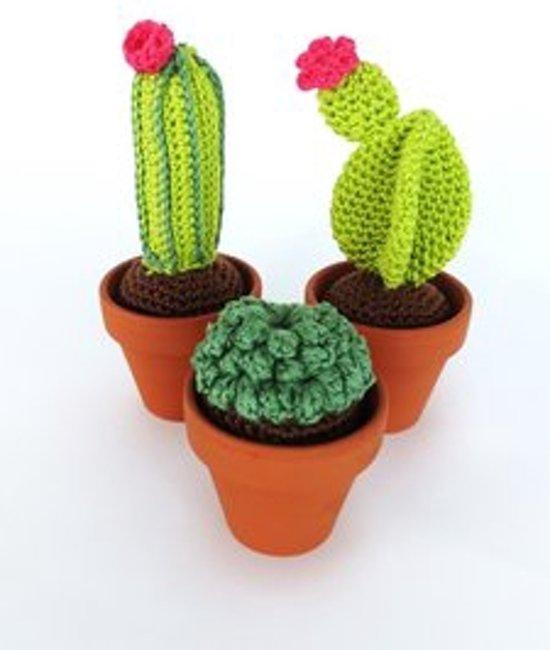Extreem bol.com | Haakpakket Cactus, set 3 stuks, HardiCraft | Speelgoed #QN88