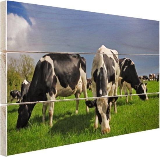 FotoCadeau.nl - Kudde grazende koeien Hout 120x80 cm - Foto print op Hout (Wanddecoratie)