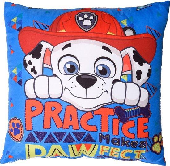 Paw Patrol Practice - sierkussen - Blauw 40 X 40 cm