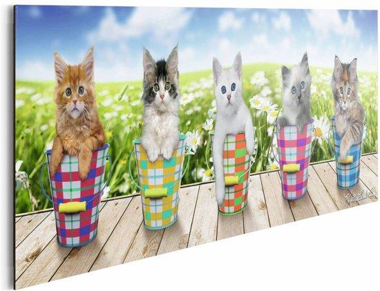 REINDERS Kittens (Keith Kimberlin) - Schilderij - 90x30cm