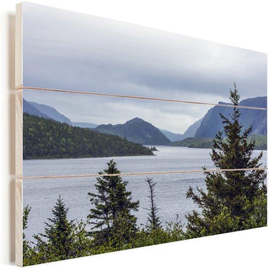 Meer in het Nationaal park Gros Morne in Canada Vurenhout met planken 90x60 cm - Foto print op Hout (Wanddecoratie)