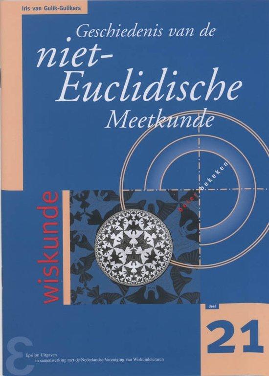 Zebra-reeks 21 - Geschiedenis van de niet-Euclidische Meetkunde