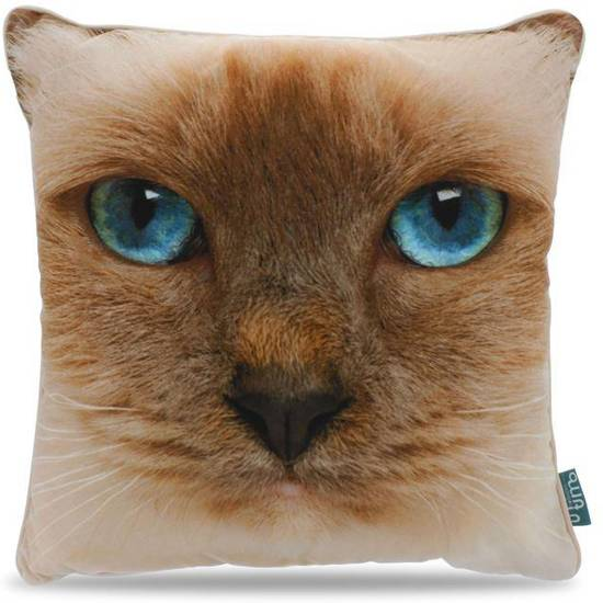 Intimo Cat Face - Sierkussen - 45x45 - Licht Bruin/Blauw