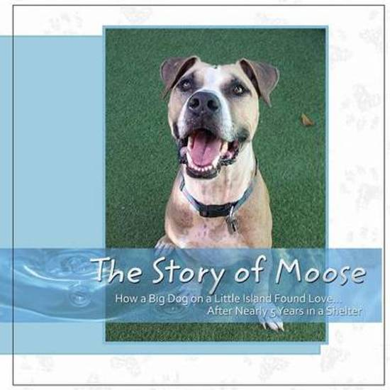The Story of Moose