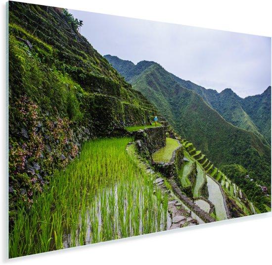De beroemde rijstterrassen in het Aziatische Banaue Plexiglas 120x80 cm - Foto print op Glas (Plexiglas wanddecoratie)