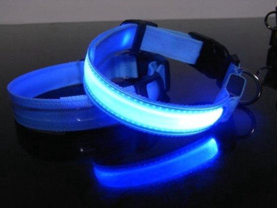 Led hondenhalsband Blauw Small  35 - 43 cm