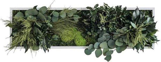 Verticale tuin - Plant islands - 70 x 20cm