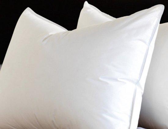 Bol.com zijden kussen katoenen tijk : 55% zijde vulling 60*60