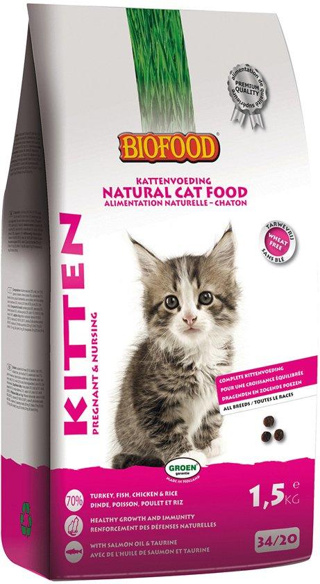 voeding kitten