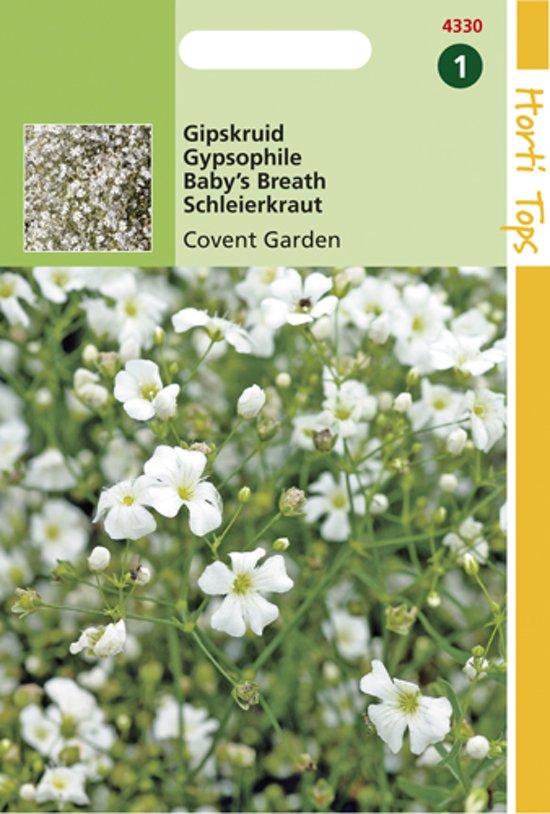 Hortitops Zaden - Gypsophila Elegans Covent Garden Wit