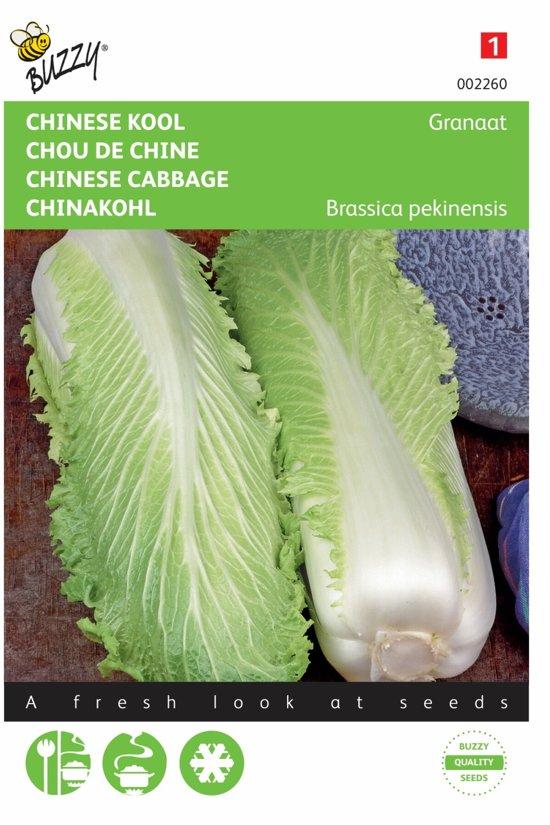 Chinese Kool Zelfsluitende Granaat - Brassica pekinensis - set van 8 stuks