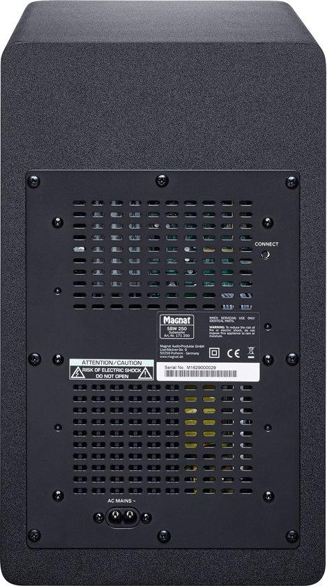 Magnat SBW 250