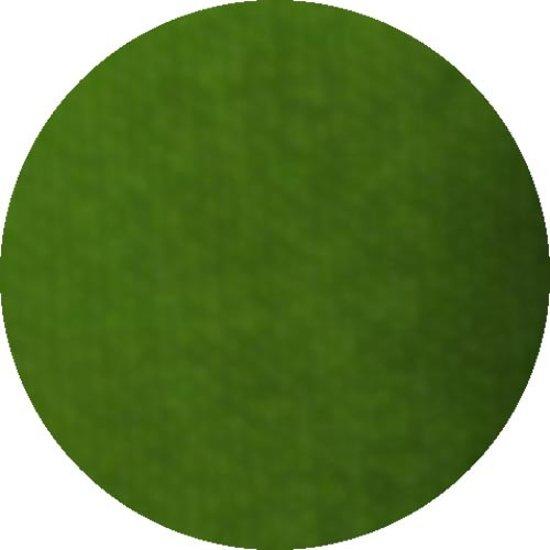 Aqua facepaint 16gr gras groen
