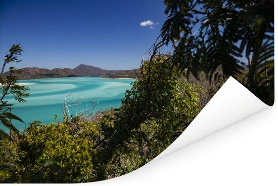 Uitzicht op het boslandschap het turquoise water van de Whitsundayeilanden Poster 120x80 cm - Foto print op Poster (wanddecoratie woonkamer / slaapkamer)