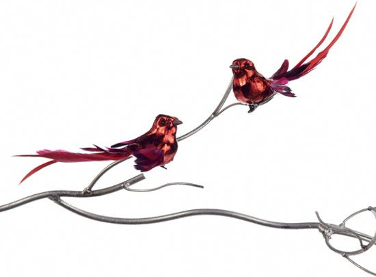 Kerstdecoraties Met Rood : Bol.com goodwill kerstdecoratie vogel op clip set van 12 16 cm