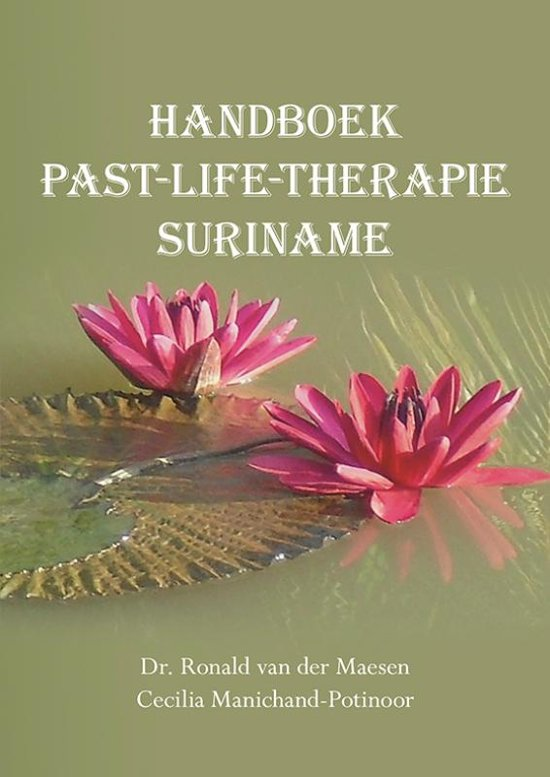 Handboek past-life-therapie