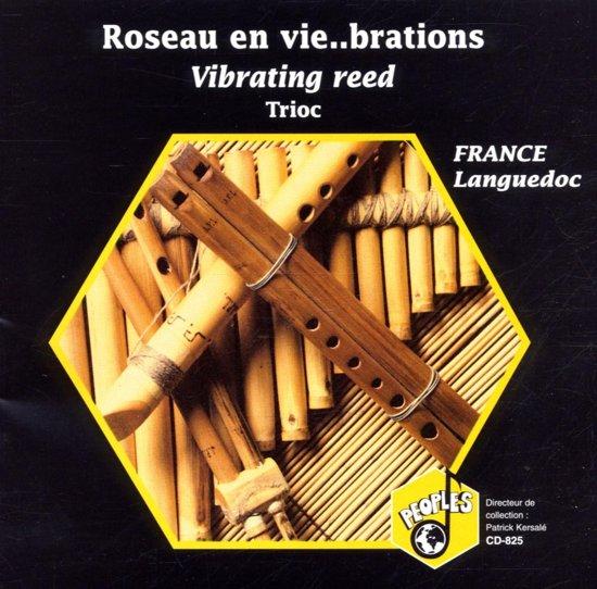 Vibrating Reed