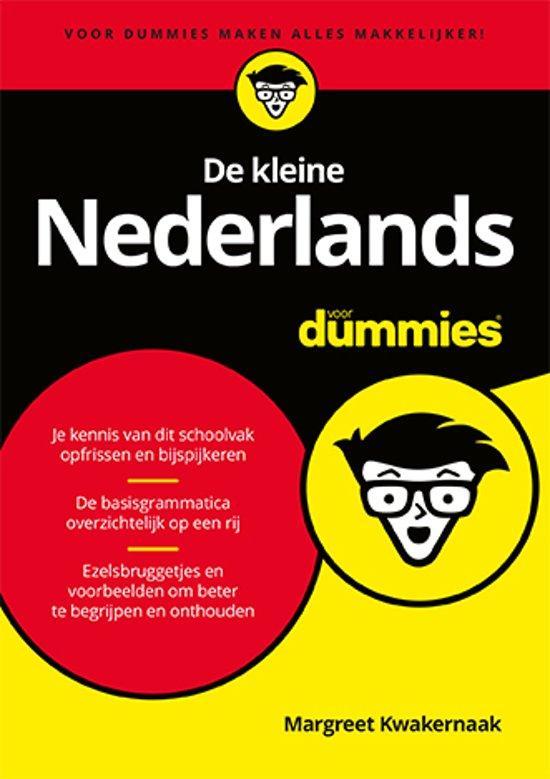 Voor Dummies - De kleine Nederlands voor Dummies