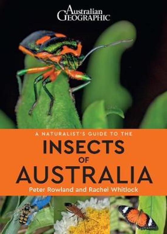 A A Naturalist's Guide to the Insects of Australia