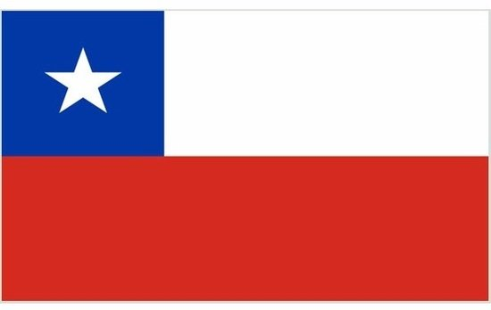Mini vlag Chili 60 x 90 cm