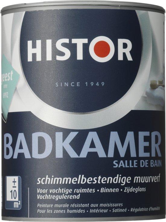 bol.com | Histor Badkamer Muurverf - 1 liter - Geest